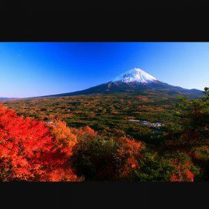 秋の美しい富士山 MtFuji 霊峰富士